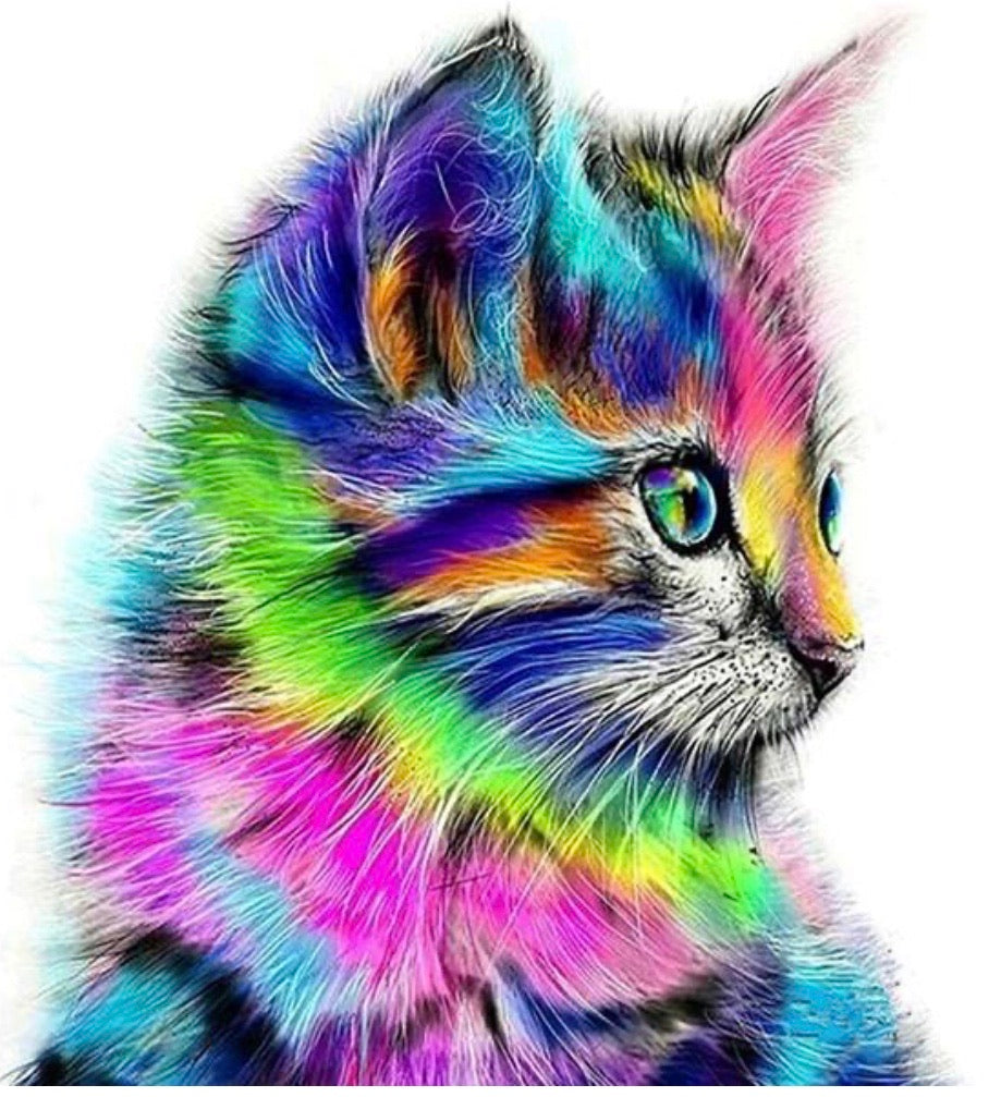 40 x 30 FULL round drill diamond painting - rainbow kitten - FKW1076