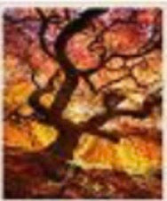 30 x 40 full drill diamond painting - (Hy715) sunset tree