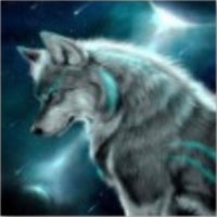 30 x 40 full round drill - moonlight wolf - HY6113