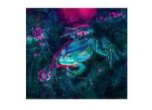 50 x 40 full square drill diamond painting - TA816 - Froggie