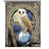 60 x 50 full square drill diamond painting - TA313 - framed HP owl
