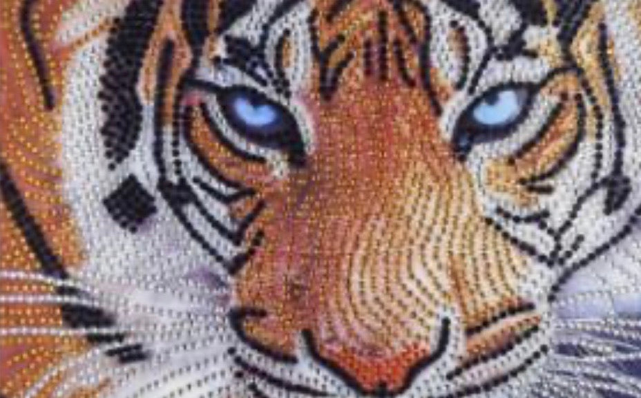 25 x 30 full round drill diamond painting - tiger H006