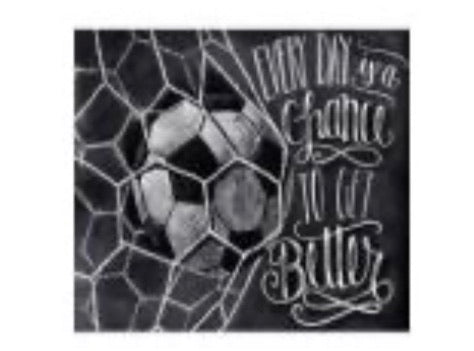 50 x 40 full square drill diamond painting- TA803- soccer net