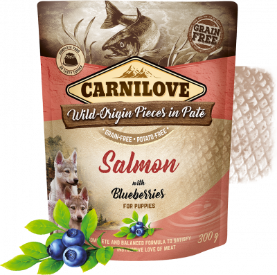 Carnilove pouch paté Salmon with blueberries - for puppies