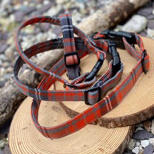 Grey & Orange window check collar