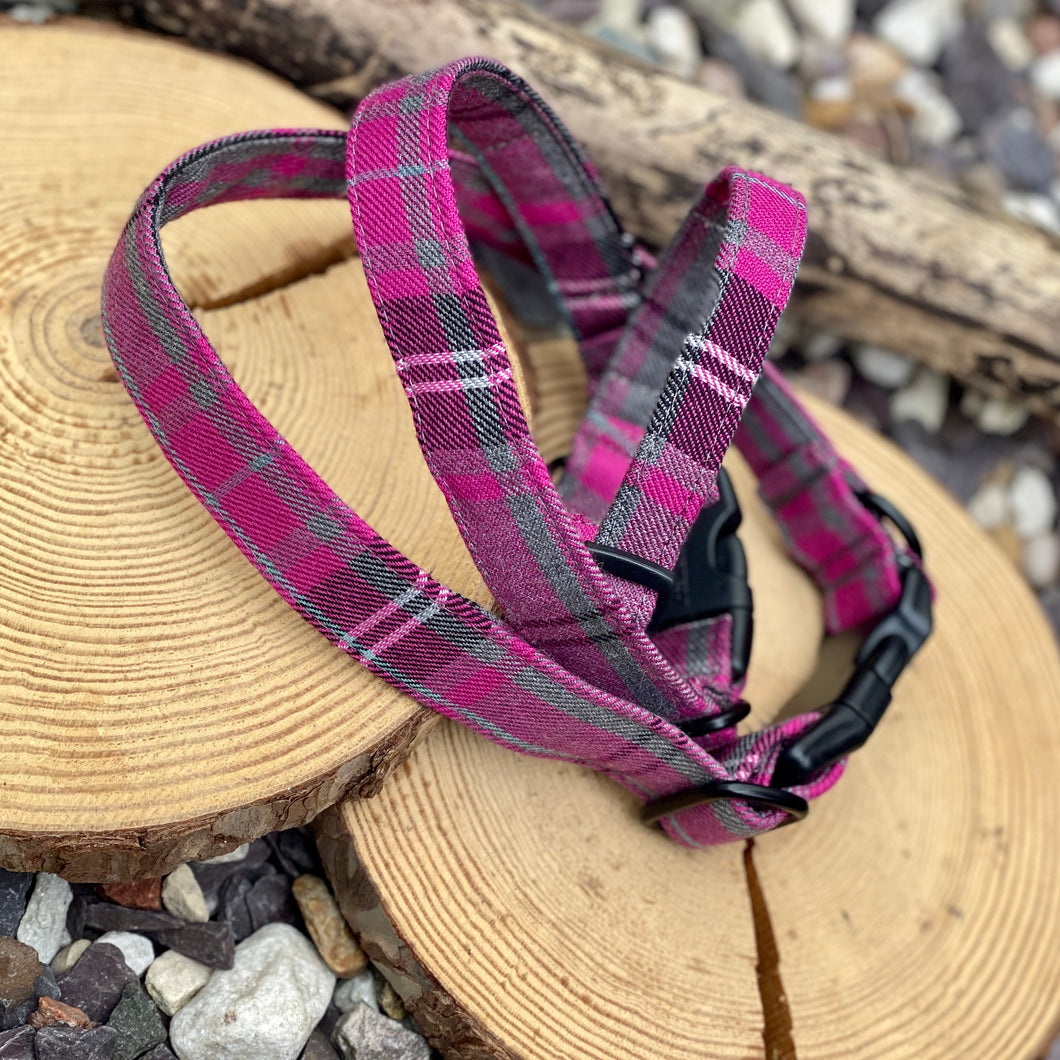 Grey & Pink window check collar