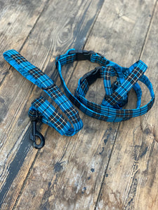 Aqua blue, black & gold tartan (collar & leads)