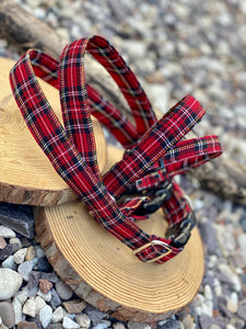 Classic Red Stewart tartan collar & Leads