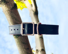 Load image into Gallery viewer, B&V leather collar classic black