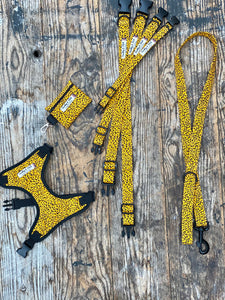 "Yellow/black Pawsome ""wild side"" collars & Lead by Barkley & Fetch"