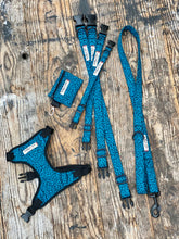 "Load image into Gallery viewer, Blue/black Pawsome ""wild side"" collars & Lead by Barkley & Fetch"
