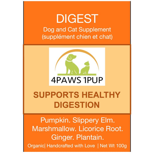 4Paws 1Pup Digest Cat and Dog Supplement