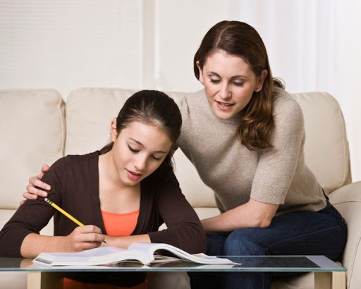 A parent and child work together on a homeschool assignment.