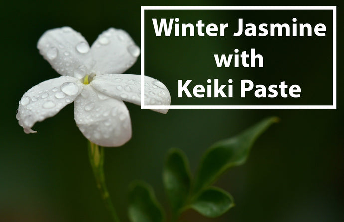 Jazz Up Winter Jasmine with Keiki Paste