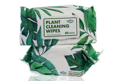 Plant Cleaning Wipes