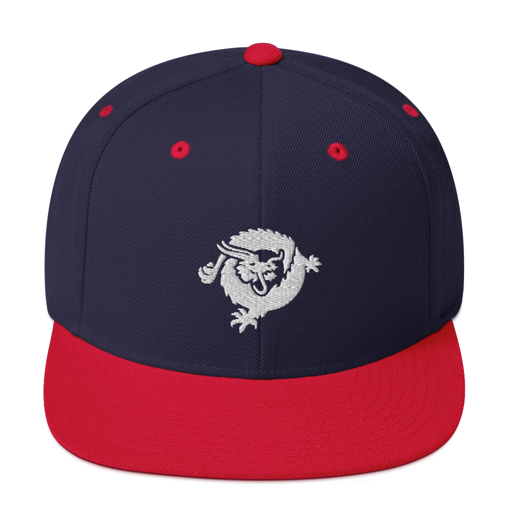 Bitcoin SV Dragon Snapback Hat White Navy/ Red  - zeroconfs