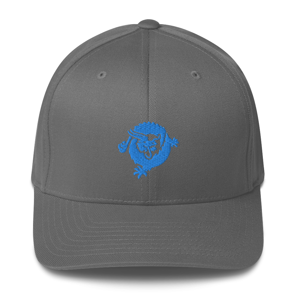 Bitcoin SV Dragon Flexfit Cap Blue Grey S/M - zeroconfs