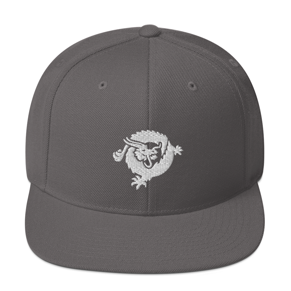 Bitcoin SV Dragon Snapback Hat White Dark Grey  - zeroconfs