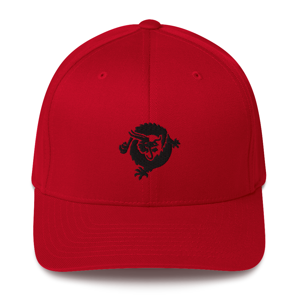 Bitcoin SV Dragon Flexfit Cap Black Red S/M - zeroconfs