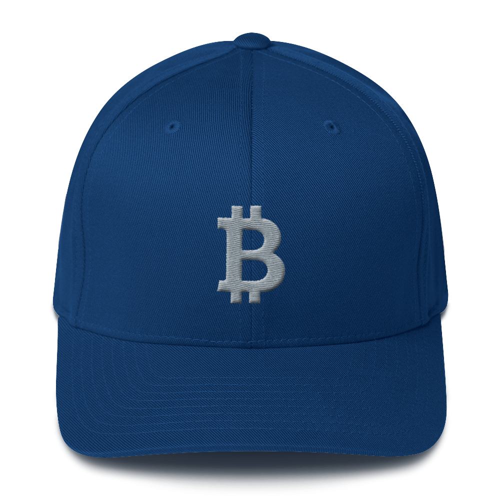 Bitcoin B Flexfit Cap Gray Royal Blue S/M - zeroconfs