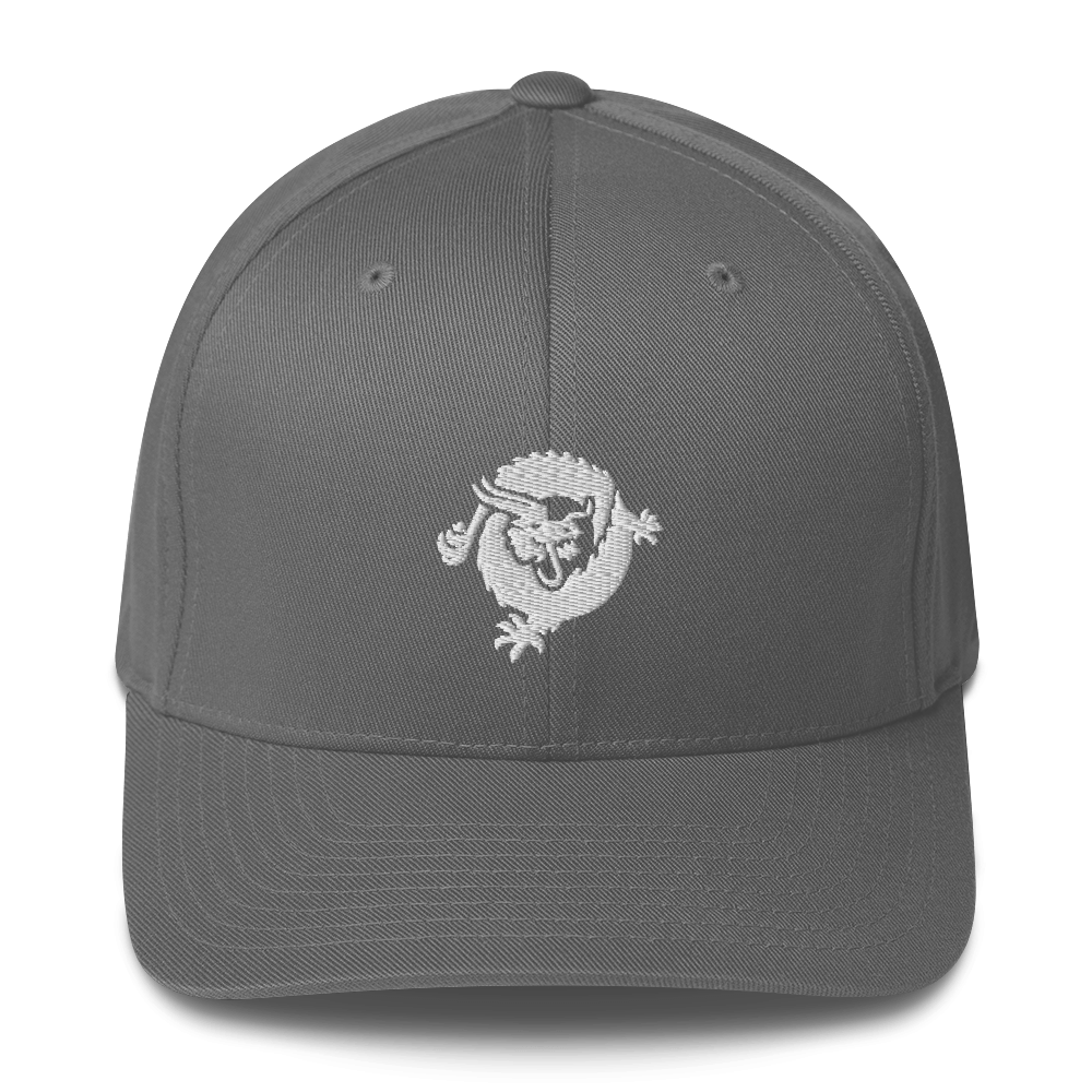 Bitcoin SV Dragon Flexfit Cap White Grey S/M - zeroconfs