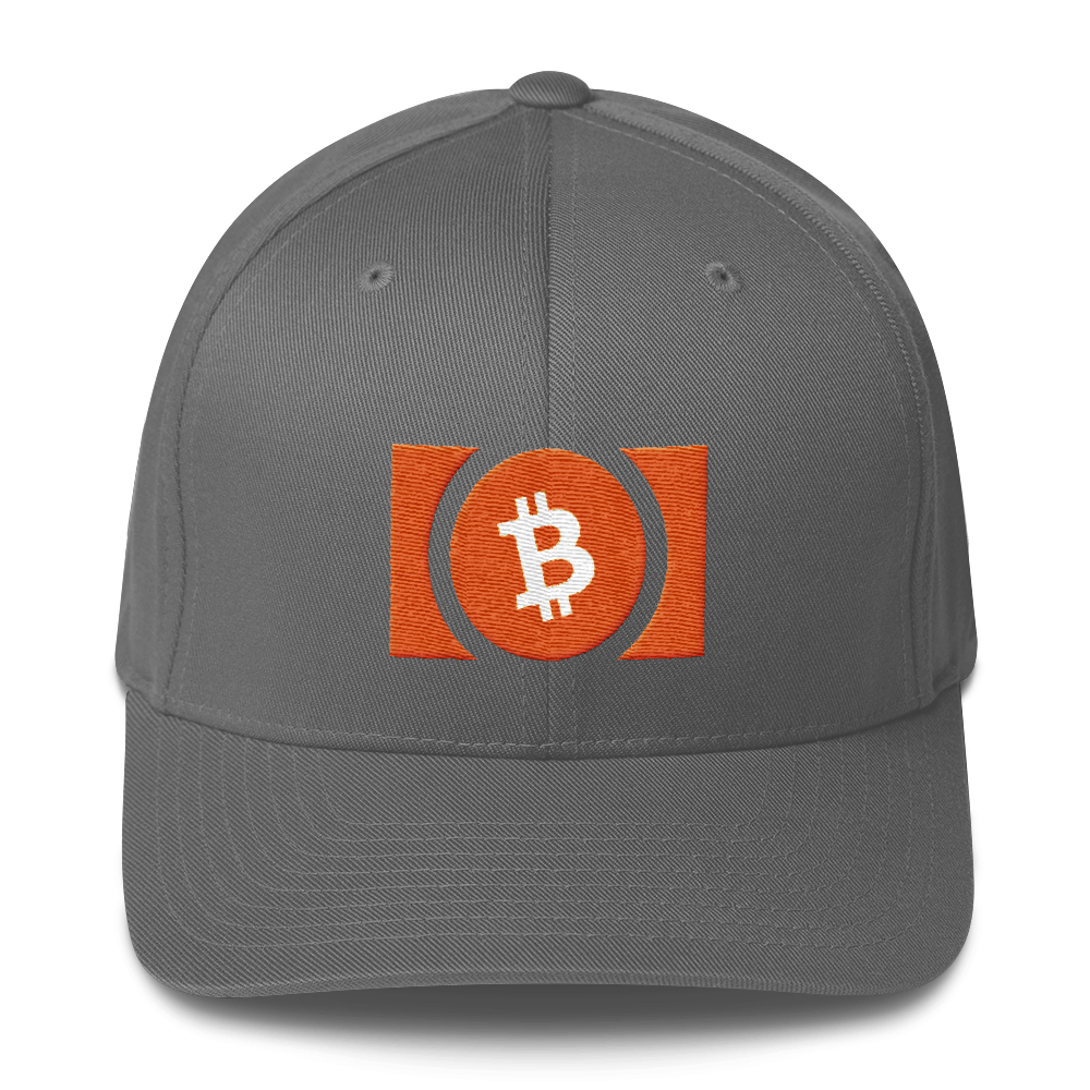 Bitcoin Cash Flexfit Cap Grey S/M - zeroconfs