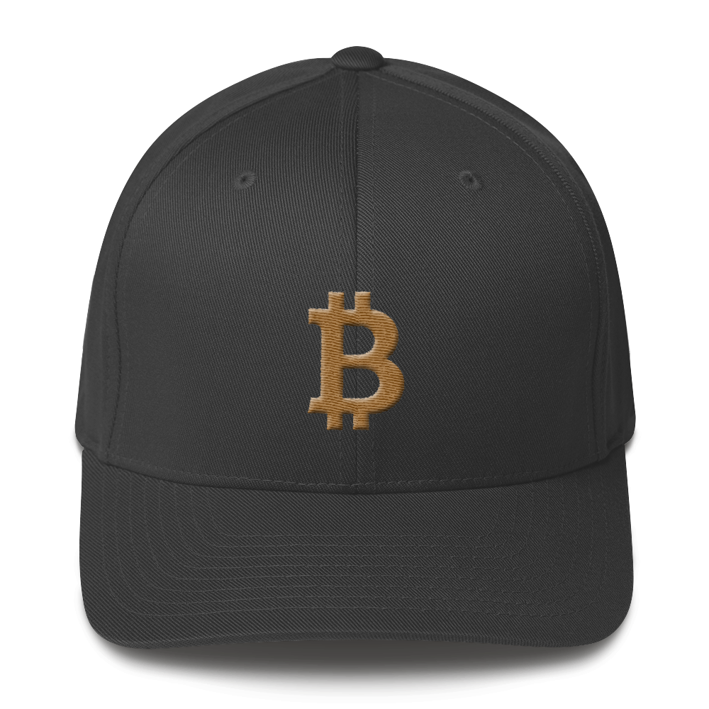 Bitcoin B Flexfit Cap Gold Dark Grey S/M - zeroconfs