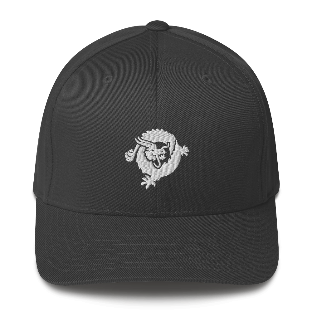 Bitcoin SV Dragon Flexfit Cap White Dark Grey S/M - zeroconfs