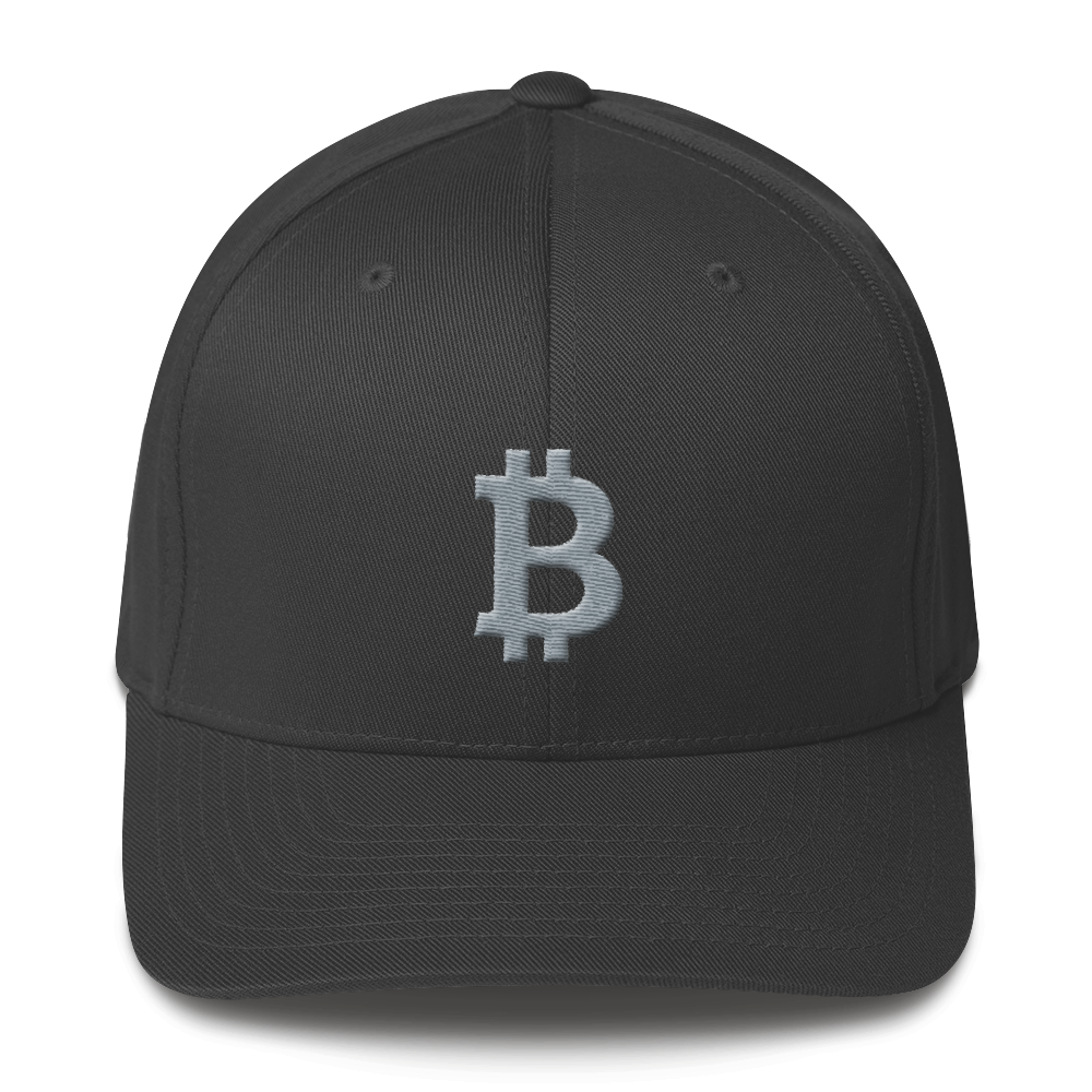 Bitcoin B Flexfit Cap Gray Dark Grey S/M - zeroconfs