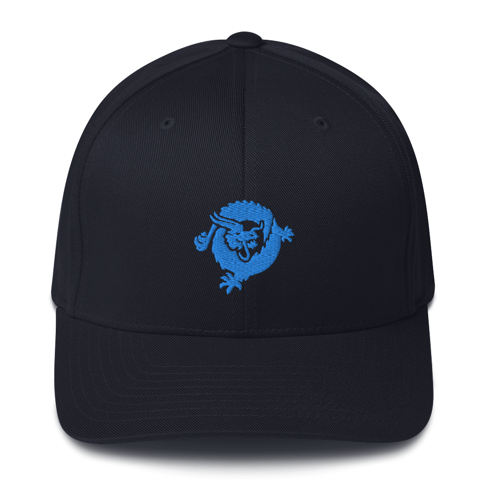 Bitcoin SV Dragon Flexfit Cap Blue Dark Navy S/M - zeroconfs