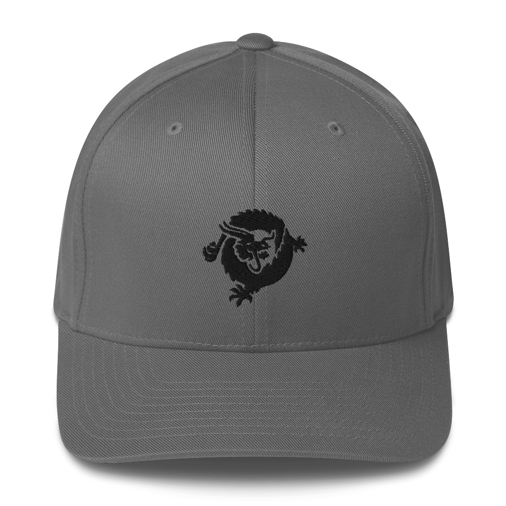 Bitcoin SV Dragon Flexfit Cap Black Grey S/M - zeroconfs