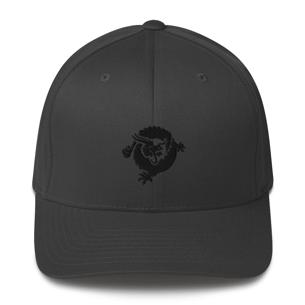 Bitcoin SV Dragon Flexfit Cap Black Dark Grey S/M - zeroconfs