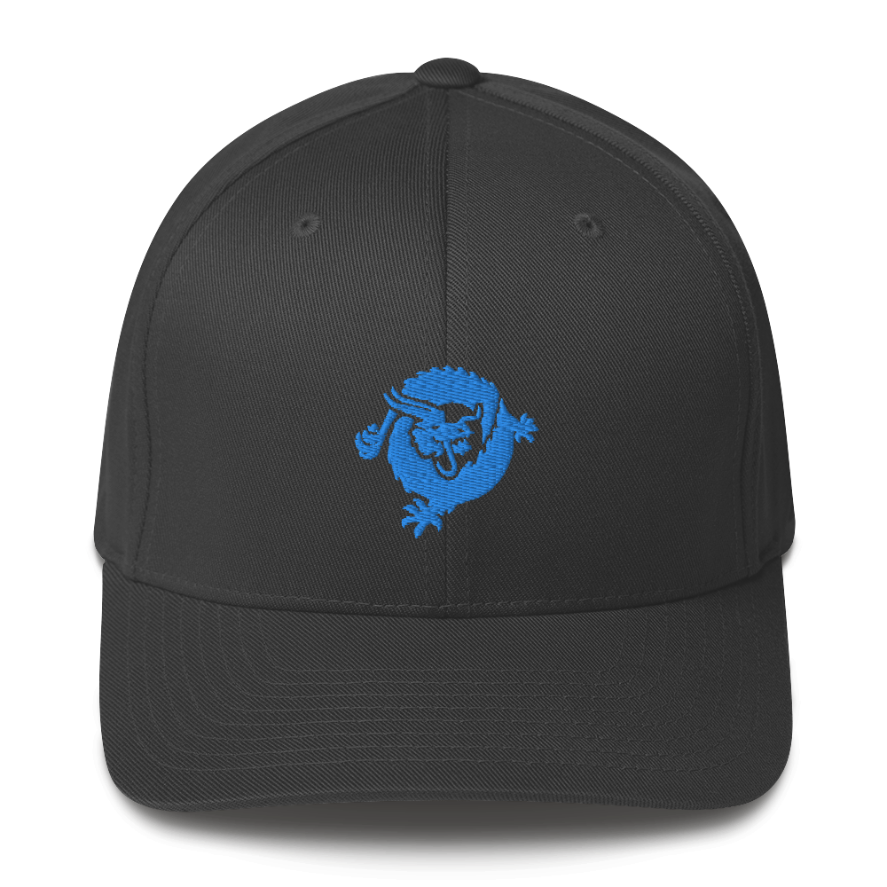 Bitcoin SV Dragon Flexfit Cap Blue Dark Grey S/M - zeroconfs