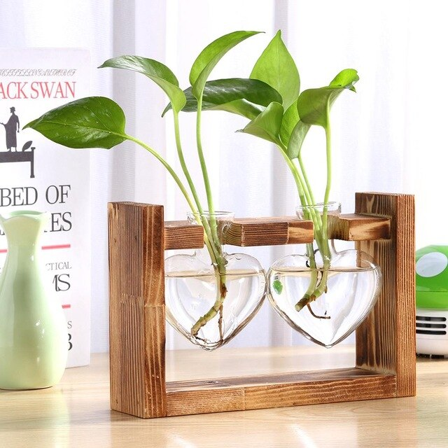 Glass and Wood Planter Vase