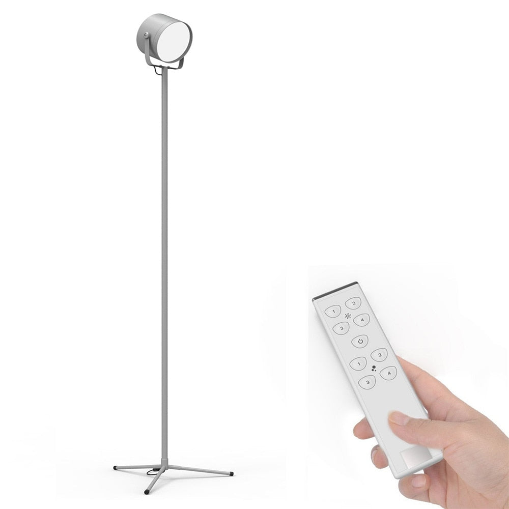 LED Floor Lamp with Remote Control