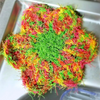 Flower Power Dish Scrubby Crochet Pattern