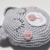 Girls' Sleepy Teddy Pillow Crochet Pattern