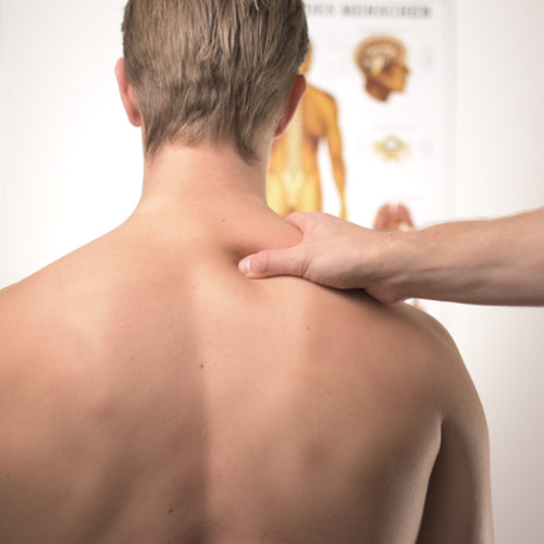 Understanding Your Sore Back and How to Get Relief Report and ECourse
