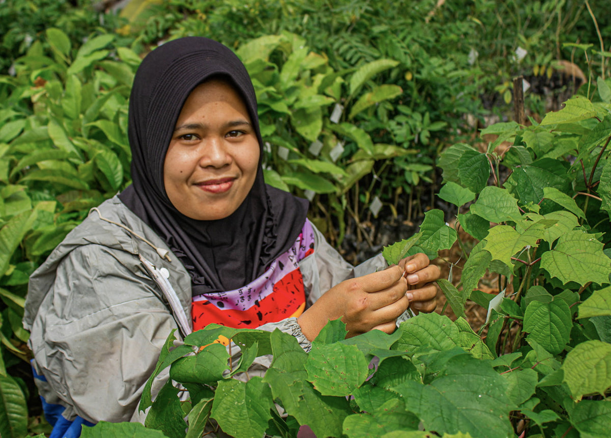 Courtesy One Tree Planted - woman planting tree in Indonesia