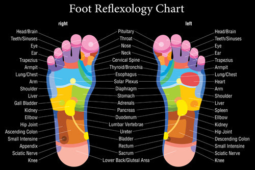 Foot Massage reflexology chart