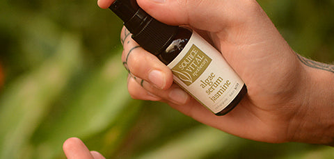 Algae Face Serums by Source Vital Apothecary