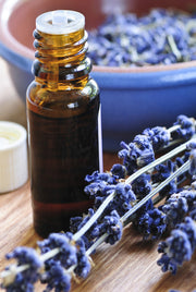 Lavender Official Essential Oil from Source Vital