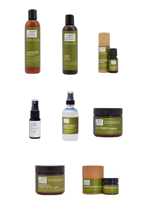 Make Your Own Facial Skin Care Kit - 8 Products