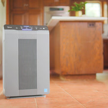 Load image into Gallery viewer, 5300-2 Air Cleaner with PlasmaWave Technology