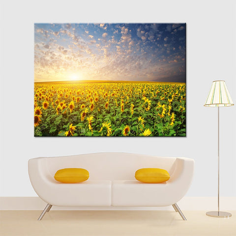 Sunrise Sunflower Field Modern Decor Canvas Wall Art HD Print