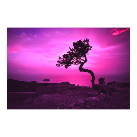 Tree at Sunset Purple Sky Modern Decor Canvas Wall Art HD Print