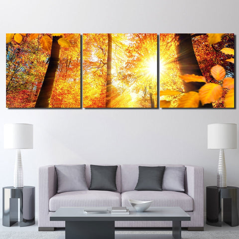 3 Panel Sunshine Maple Tree Forest  Modern Decor Canvas Wall Art HD Print