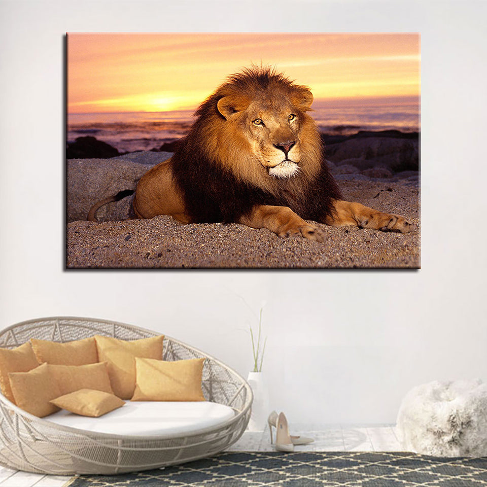 Majestic Lion in the Sunset Modern Décor Wall Art Canvas HD Print