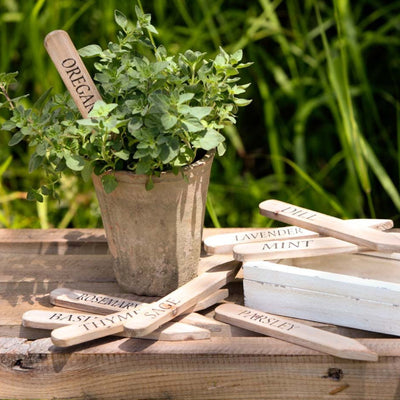 Herb Plant Stakes-Iron Accents