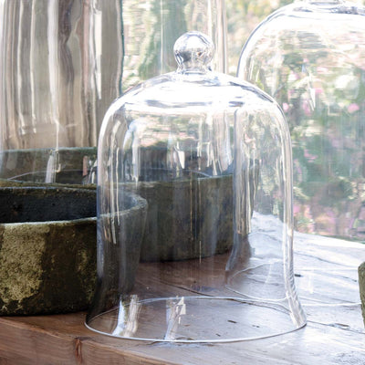 Glass Bell Cloches-Iron Accents